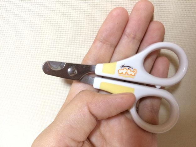 猫の爪を自宅で切る方法…家猫は定期的にお手入れしましょう