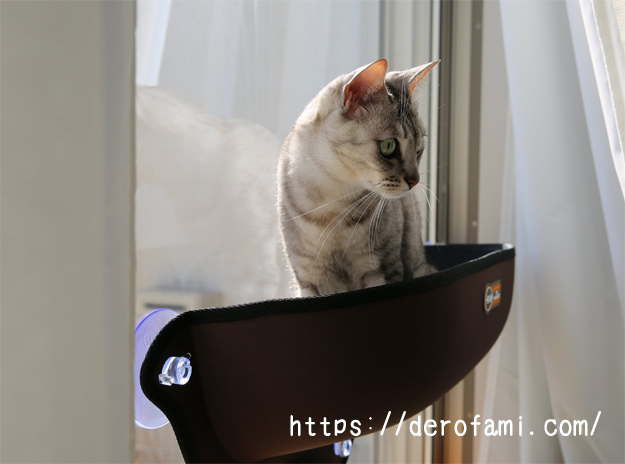 窓に貼り付ける猫ベッド「EZ Mount window Bed」を使ってみた感想…外を眺めるのが好きな猫にオススメ
