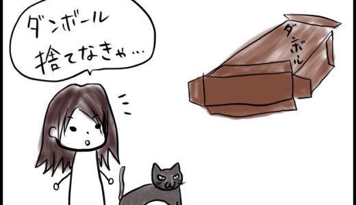 猫マンガ「ダンボールが好きな猫」